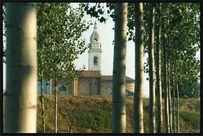 Church and poplars